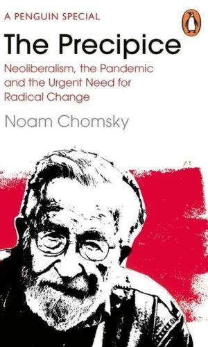 THE PRECIPICE <br> Noam Chomsky